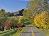 Rural Road Through Bluegrass in Autumn Near Lexington, Kentucky, USA Photographic Print by Adam Jones
