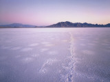 Bonneville Salt Flats at Sunrise, Silver Island Mountains & Pilot Peak, Utah, USA Photographic Print by Scott T. Smith