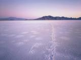 Bonneville Salt Flats at Sunrise, Silver Island Mountains & Pilot Peak, Utah, USA Photographic Print by Scott T. Smith