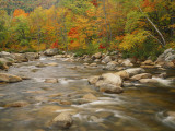 River Flowing Trough Forest in Autumn, White Mountains National Forest, New Hampshire, USA Photographic Print by Adam Jones