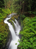 Sol Duc Falls in Olympic National Park, Washington, USA Photographic Print by Chuck Haney