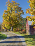 Road Beside Classic Farm in Autumn, New Hampshire, USA Photographic Print by Adam Jones