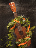 Koa Ukulele, Hawaii, USA Photographic Print by Douglas Peebles