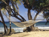 Hammock Tied Between Trees, North Shore Beach, St Croix, US Virgin Islands Fotografie-Druck von Alison Jones