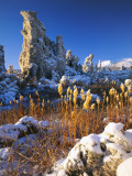 Fresh Snow on Tufa Formations & Cattails at Sunrise, Mono Lake, Inyo National Forest, CA Photographic Print by Scott T. Smith