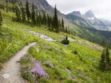 Highline Trail To Granite Park Chalet, Glacier National Park, Montana, USA Photographic Print by Jamie & Judy Wild