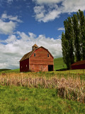 A Ride Through the Farm Country of Palouse, Washington State, USA Fotografisk trykk av Joe Restuccia III