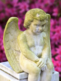 Statue of a Cherub in Bonaventure Cemetery, Savannah, Georgia, USA Photographic Print by Joanne Wells