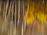 Autumn Colors Reflect in the Calm Water of Price Lake, Blue Ridge Parkway, North Carolina, USA Photographic Print by Chuck Haney