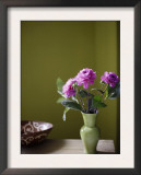 Olive Ambiance, Plum Dahlias Posters