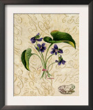 Vintage African Violets with Toad Prints