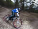 Mountain Biker on Malice in Plunderland Trail, Spencer Mountain, Whitefish, Montana, USA Fotografisk trykk av Chuck Haney