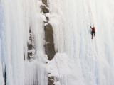 Ice Climber on Weeping Wall Above the Icefields Parkway, Banff National Park, Alberta, Canada Fotografisk tryk af Don Grall