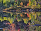 Shoreline Reflection, Lily Pond, White Mountain National Forest, New Hampshire, USA Photographic Print by Adam Jones