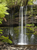 Russell Falls, Mount Field National Park, Tasmania, Australia Photographic Print by David Wall