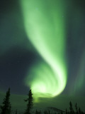 Aurora Borealis, Fairbanks, Alaska, USA Fotografisk tryk af Julie Eggers