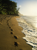 Footprints in Sand, Hanalei, Hawaii, USA Photographic Print by Douglas Peebles