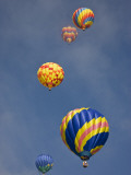 Colorful Hot Air Balloons Decorate the Morning Sky, Colorado Springs, Colorado, USA Photographic Print by Don Grall