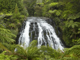 Owharoa Falls, Karangahake Gorge, Waikato, North Island, New Zealand Photographic Print by David Wall