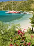 Snorkelers in Idyllic Pirates Bight Cove, Bight, British Virgin Islands Photographic Print by Trish Drury