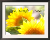 Live Laugh Love: Sunflower Poster by Nicole Katano