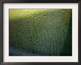 Rain Reflections II Print by Nicole Katano