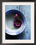 Small Blue Bowl, Two Flowers Prints