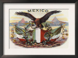 Mexican Flag and Eagle Prints