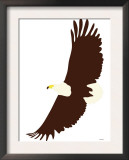 Eagle Art by  Avalisa