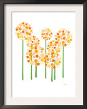 Orange Alliums Posters by  Avalisa