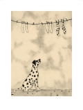Spotty Dog and Socks Poster by  JOMAC