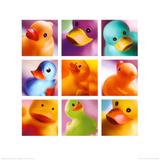 Duck Family Portraits Plakát