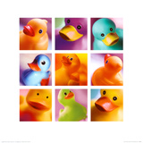 Duck Family Portraits Poster