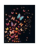 Midnight Butterflies Poster by Lily Greenwood