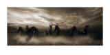 Wild Stampede Art par Malcolm Sanders