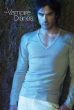 Vampire Diaries - Damon Plakat