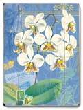 Natural Wonders-White Orchid Wood Sign