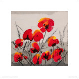 Multiple Poppies Prints by Tibi Hegyesi