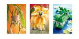 Monkey, Lion, Crocodile Posters af Howard Shooter