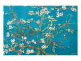 Mandelgrenar i blom, San Remy, ca 1890 Exklusivt gicléetryck av Vincent van Gogh