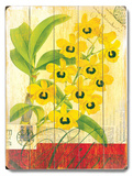 Natural Wonders-Yellow Orchid Wood Sign
