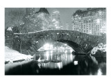 Winter in Central Park Premium Giclee Print