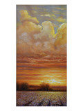 Sunset Cotton Lámina giclée de primera calidad por Jerrie Glasper