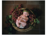 Peel Me A Grape Lámina giclée de primera calidad por Linda Johnson