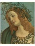 Minerva (detail) Premium Giclee Print by Sandro Botticelli