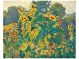 Sunflowers, Thornhill Premium Giclee Print by J. E. H. MacDonald