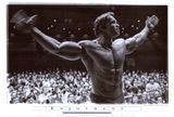 Arnold Schwarzenegger - Posterler