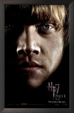 Harry Potter and The Deathly Hallows Part 1 - Ron Posters