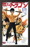 Enter the Dragon Art