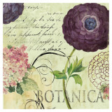 Botanica Posters par Aimee Wilson